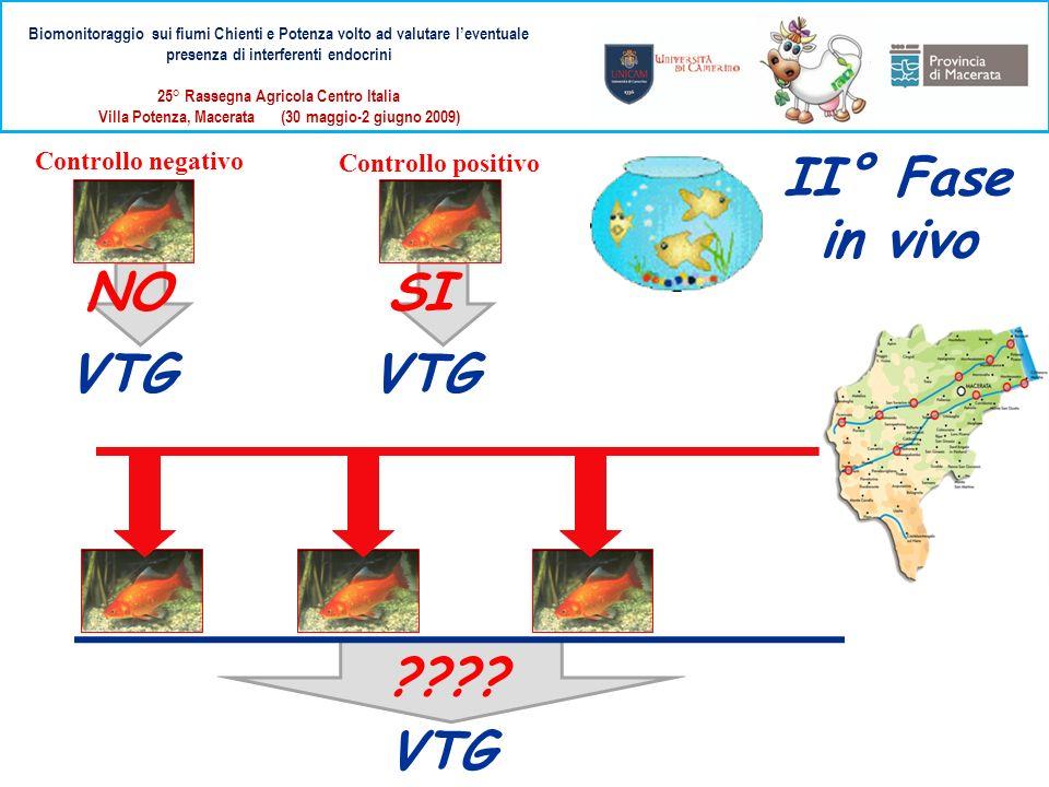 II° Fase in vivo NO SI VTG VTG VTG Controllo negativo