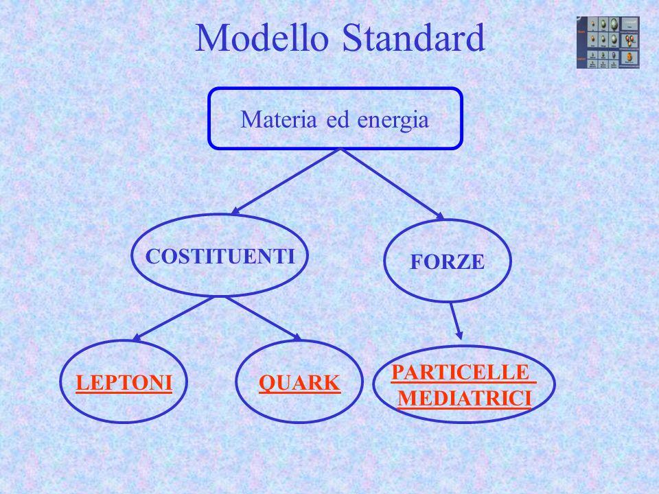 Modello Standard Materia ed energia PARTICELLE MEDIATRICI COSTITUENTI
