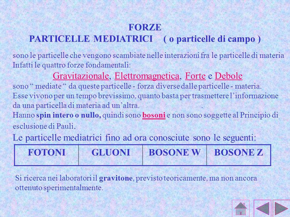 PARTICELLE MEDIATRICI ( o particelle di campo )