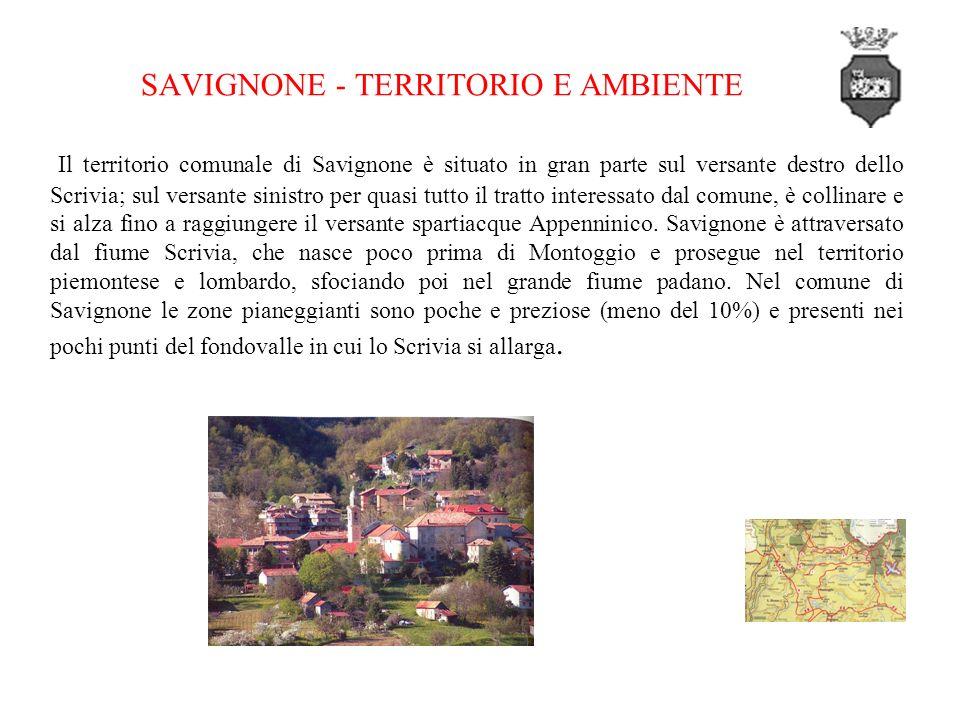 SAVIGNONE - TERRITORIO E AMBIENTE