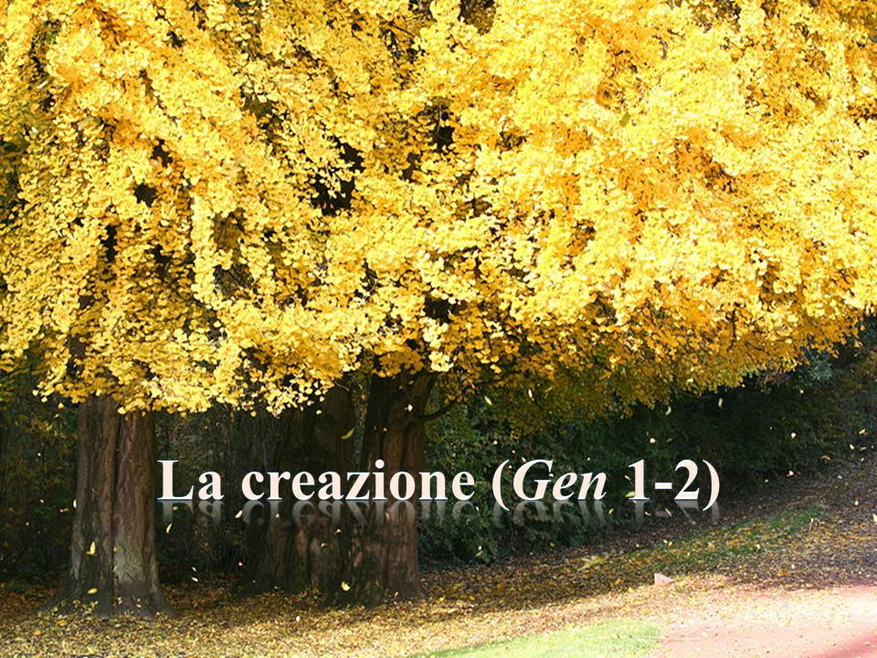 La creazione (Gen 1-2)