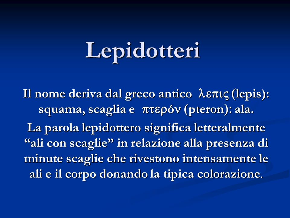 Lepidotteri Il nome deriva dal greco antico lepi (lepis): squama, scaglia e pterón (pteron): ala.
