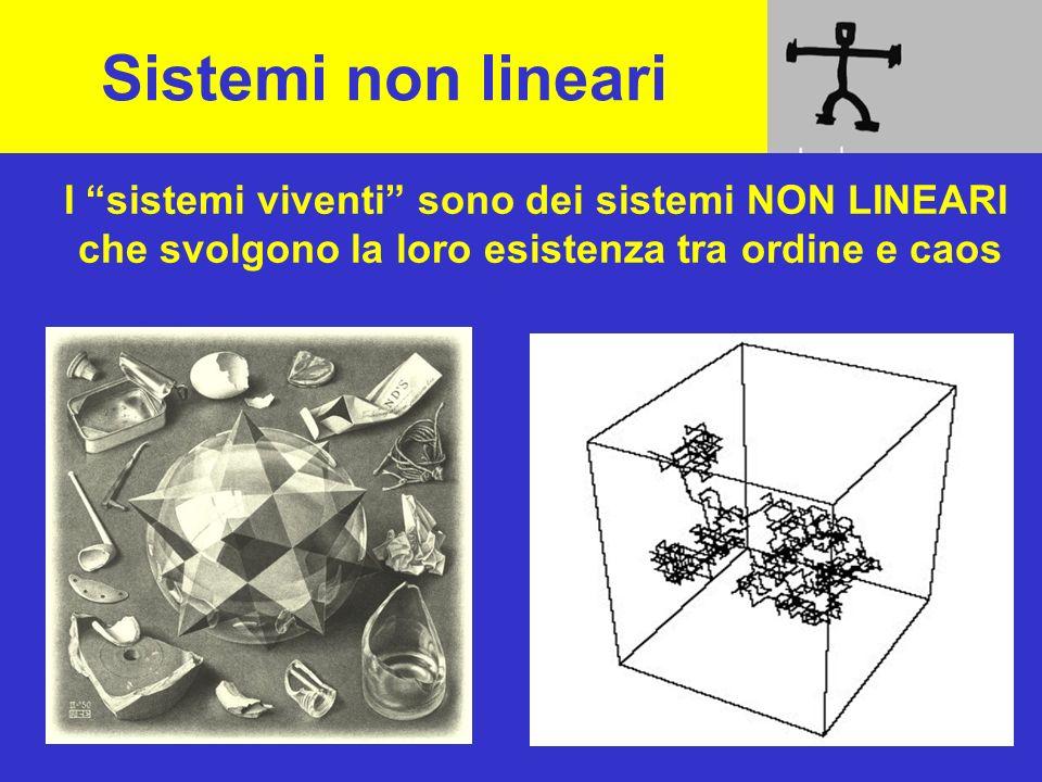 Sistemi non lineari I sistemi viventi sono dei sistemi NON LINEARI che svolgono la loro esistenza tra ordine e caos.