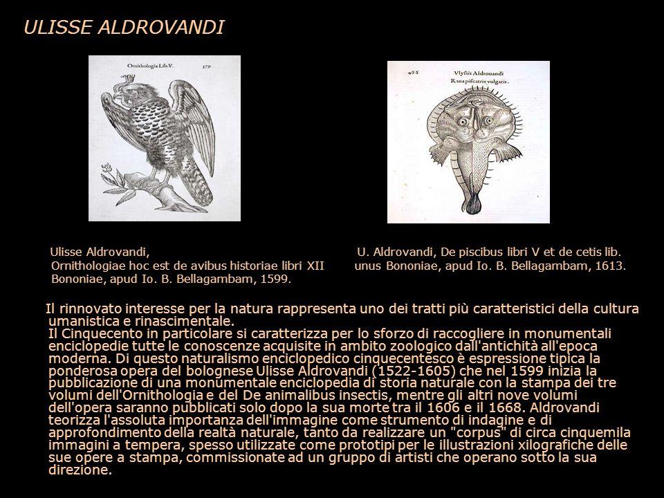 ULISSE ALDROVANDI Ulisse Aldrovandi, U. Aldrovandi, De piscibus libri V et de cetis lib.