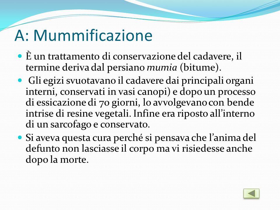 A: Mummificazione È un trattamento di conservazione del cadavere, il termine deriva dal persiano mumia (bitume).
