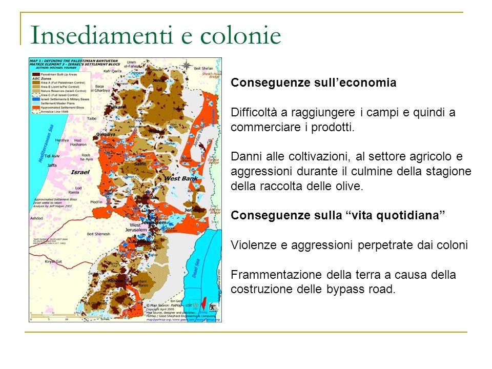 Insediamenti e colonie