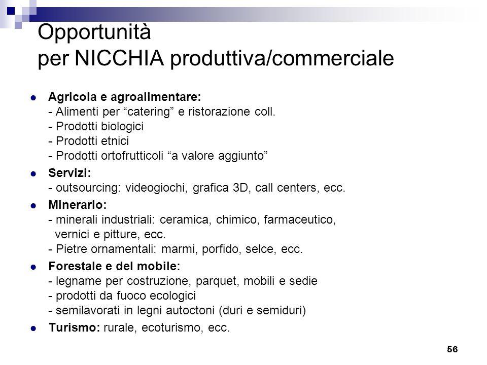 Opportunità per NICCHIA produttiva/commerciale