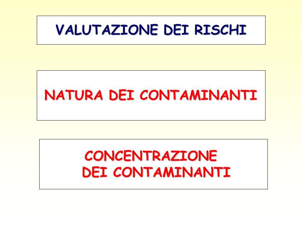 VALUTAZIONE DEI RISCHI NATURA DEI CONTAMINANTI