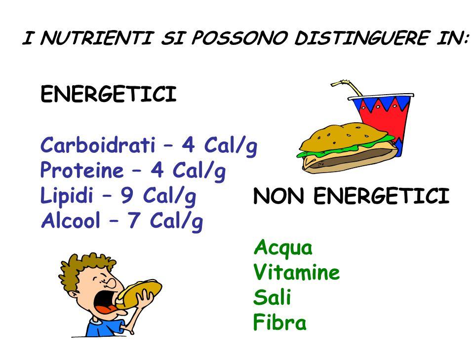 ENERGETICI Carboidrati – 4 Cal/g Proteine – 4 Cal/g Lipidi – 9 Cal/g