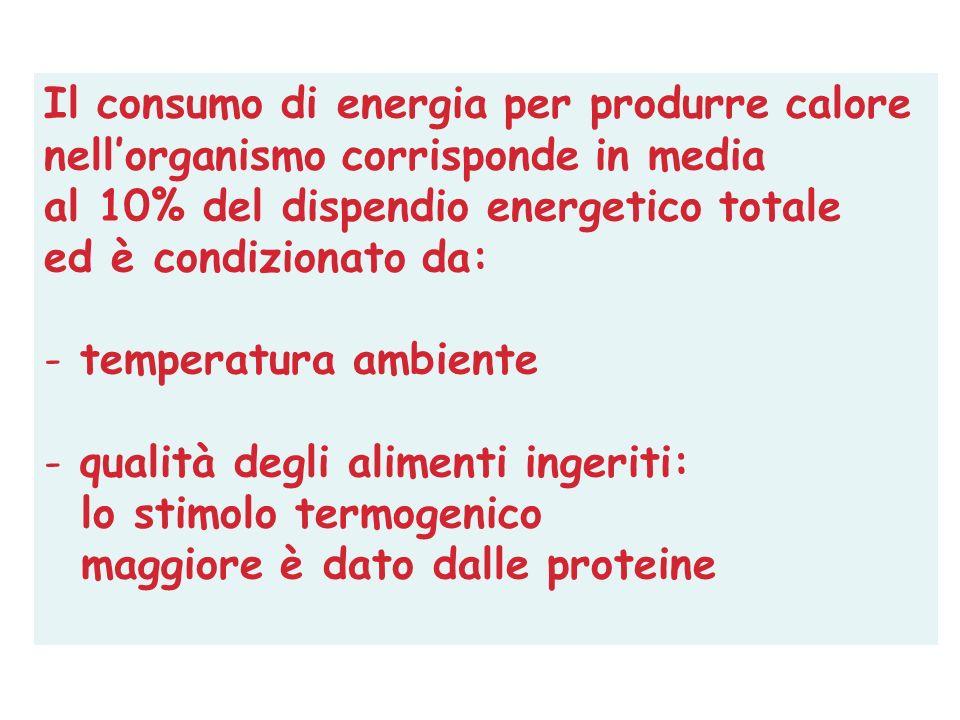 Il consumo di energia per produrre calore