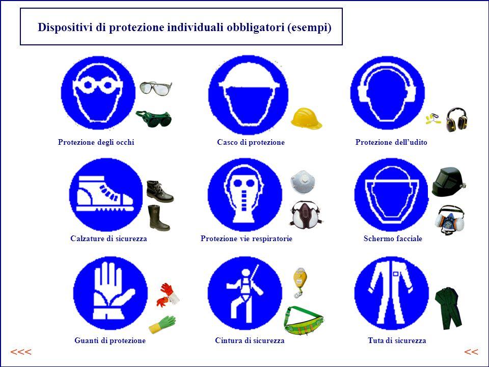 Dispositivi di protezione individuali obbligatori (esempi)