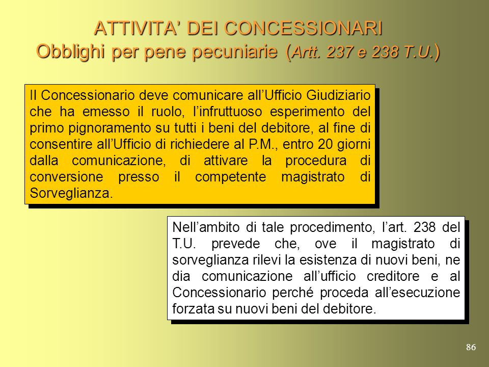 ATTIVITA' DEI CONCESSIONARI Obblighi per pene pecuniarie (Artt