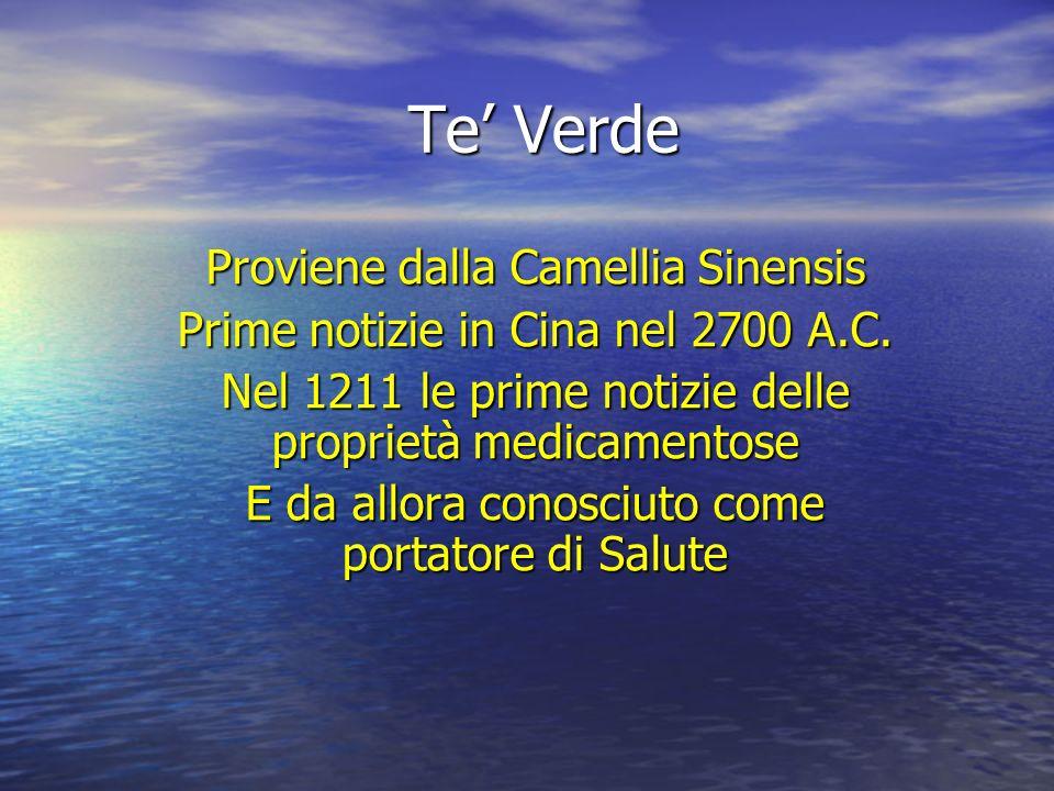 Te' Verde Proviene dalla Camellia Sinensis