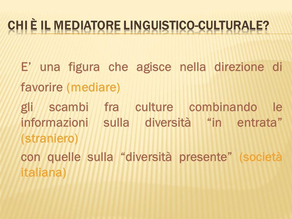 Chi è il mediatore linguistico-culturale