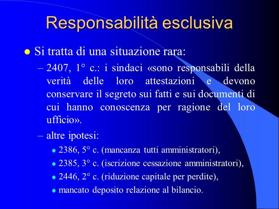 Responsabilità esclusiva