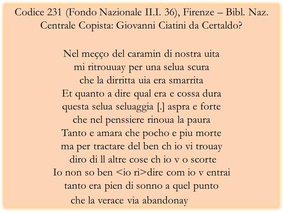 Codice 231 (Fondo Nazionale II. I. 36), Firenze – Bibl. Naz