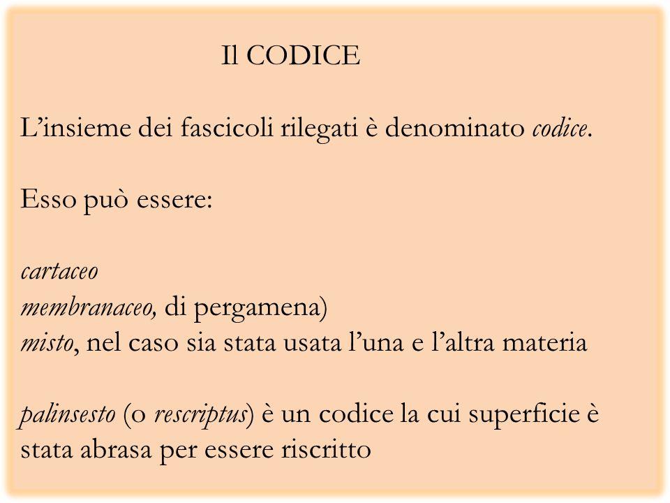 Il CODICE L'insieme dei fascicoli rilegati è denominato codice