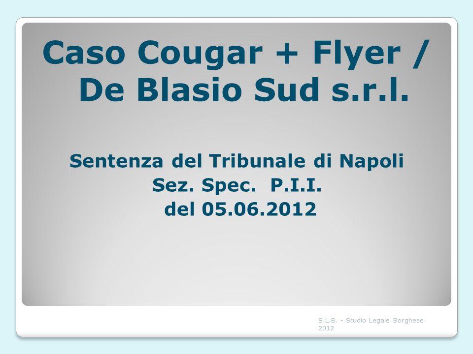 Caso Cougar + Flyer / De Blasio Sud s.r.l.