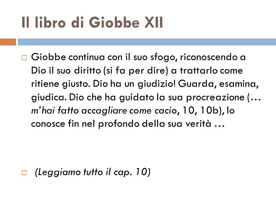 Il libro di Giobbe XII