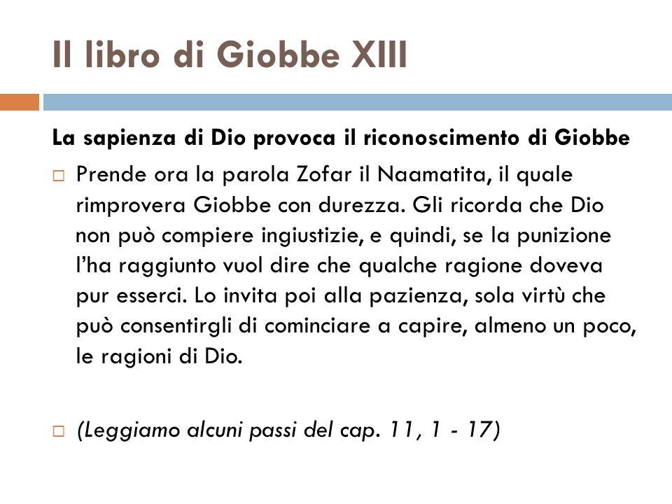 Il libro di Giobbe XIII La sapienza di Dio provoca il riconoscimento di Giobbe.