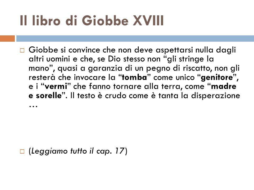 Il libro di Giobbe XVIII
