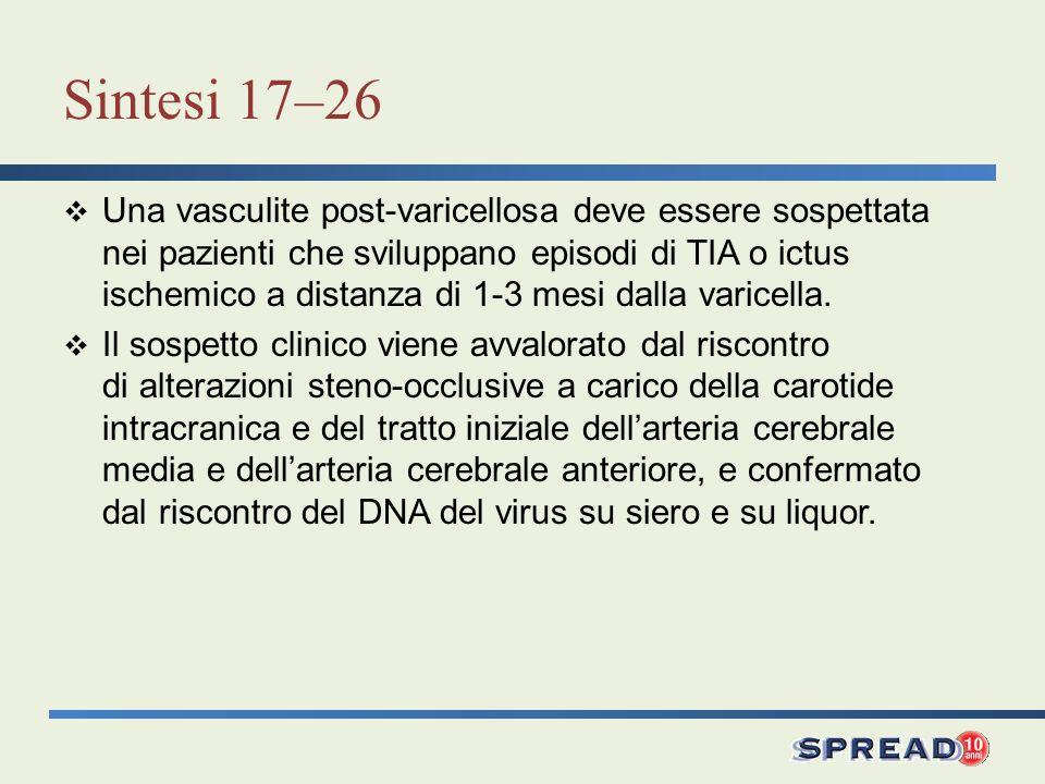 Sintesi 17–26