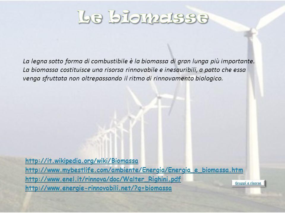 Le biomasse La legna sotto forma di combustibile è la biomassa di gran lunga più importante.