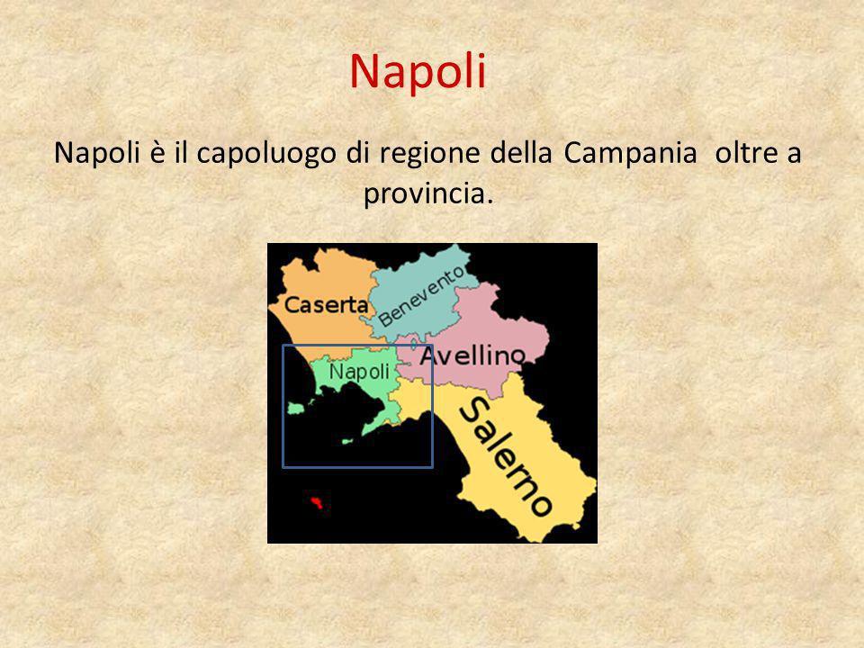 Napoli è il capoluogo di regione della Campania oltre a provincia.