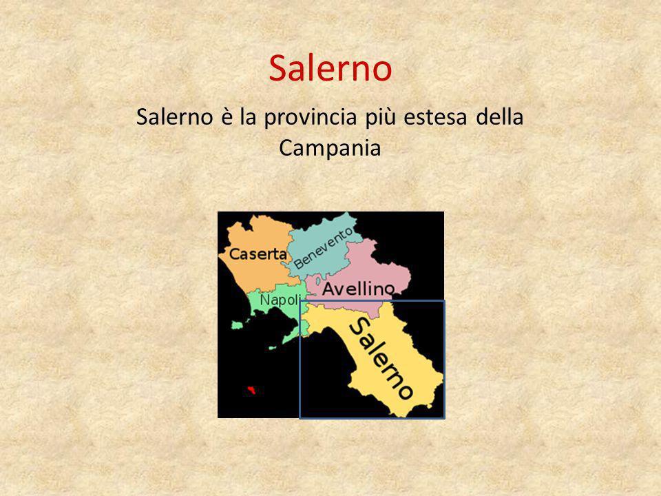 Salerno è la provincia più estesa della Campania
