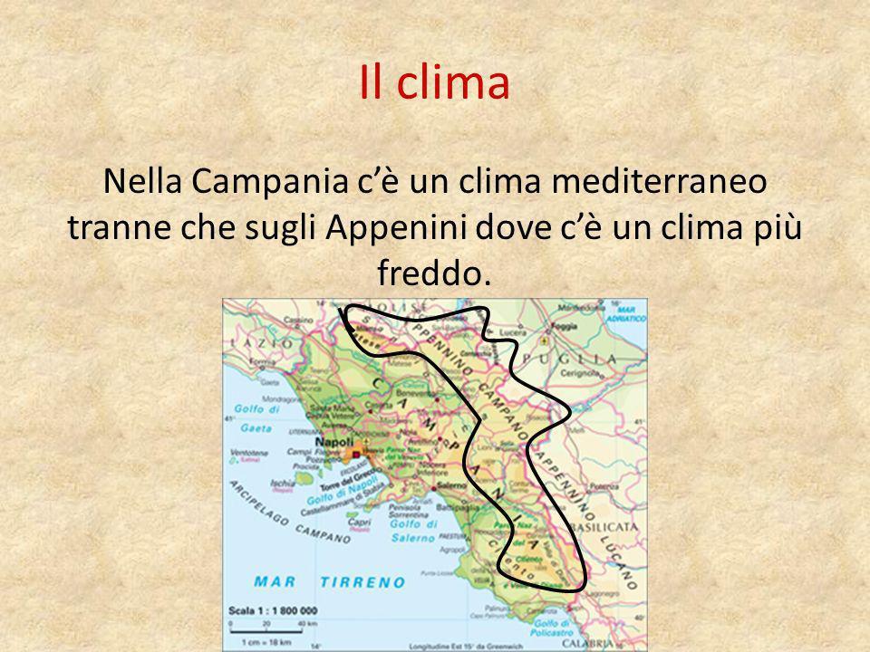 Il clima Nella Campania c'è un clima mediterraneo tranne che sugli Appenini dove c'è un clima più freddo.