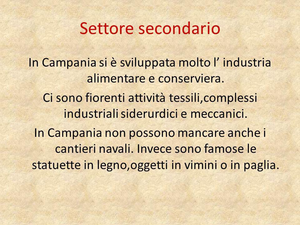 Settore secondario In Campania si è sviluppata molto l' industria alimentare e conserviera.