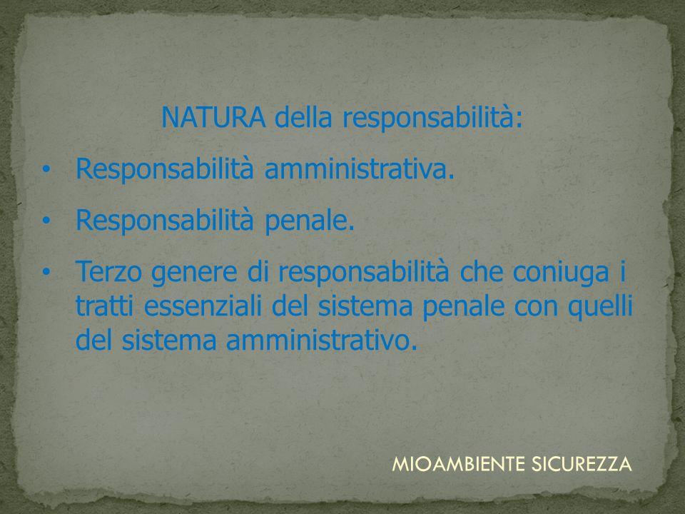 NATURA della responsabilità:
