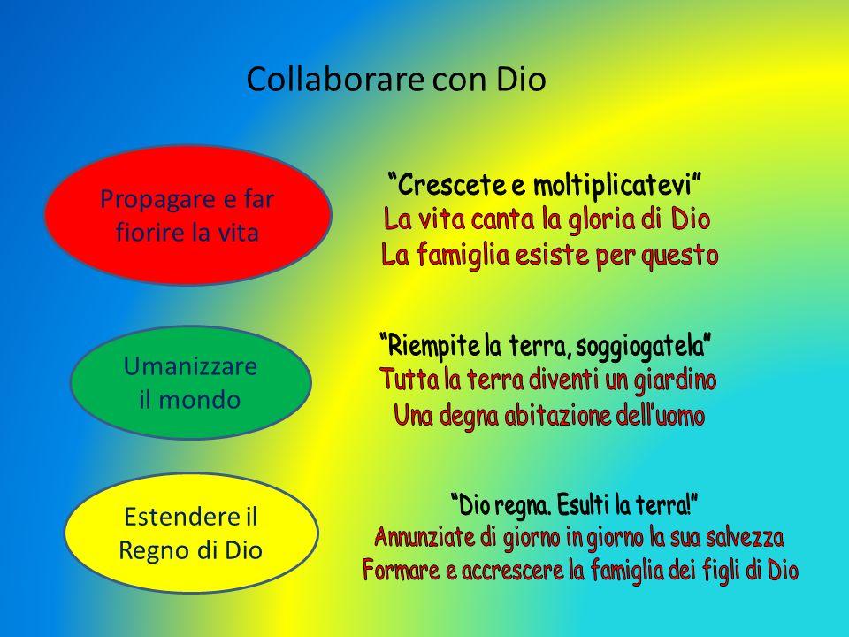 Collaborare con Dio Propagare e far fiorire la vita
