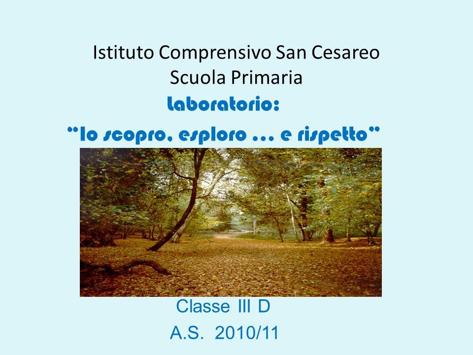 Istituto Comprensivo San Cesareo Scuola Primaria
