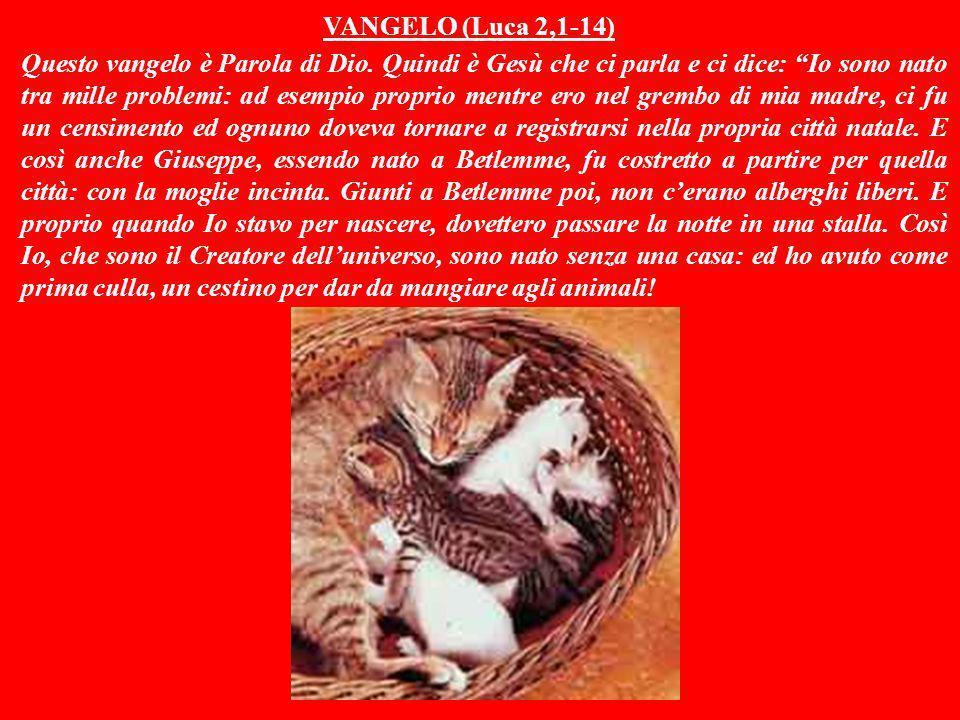 VANGELO (Luca 2,1-14)