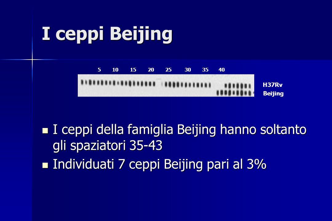 I ceppi Beijing 5 10 15 20 25 30 35 40. H37Rv. Beijing.