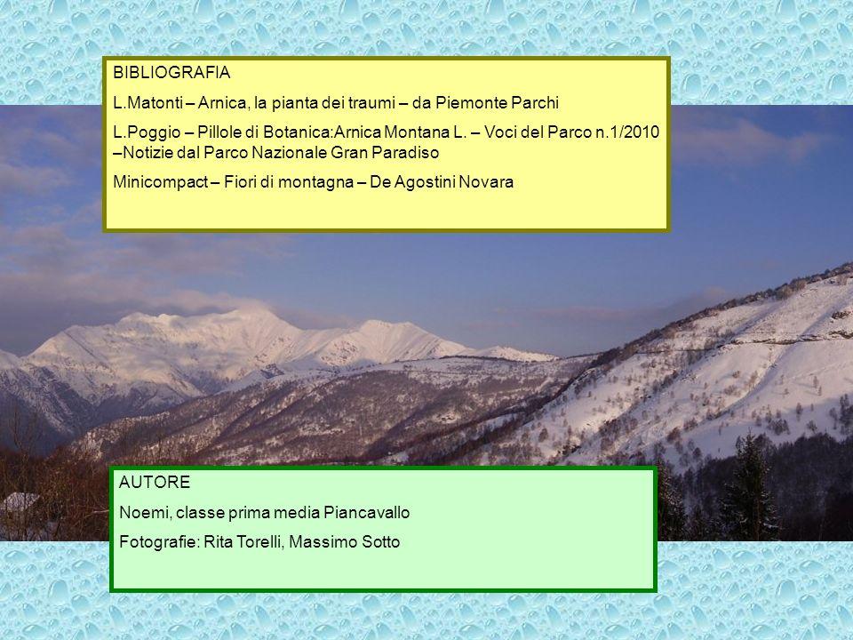 BIBLIOGRAFIA L.Matonti – Arnica, la pianta dei traumi – da Piemonte Parchi.