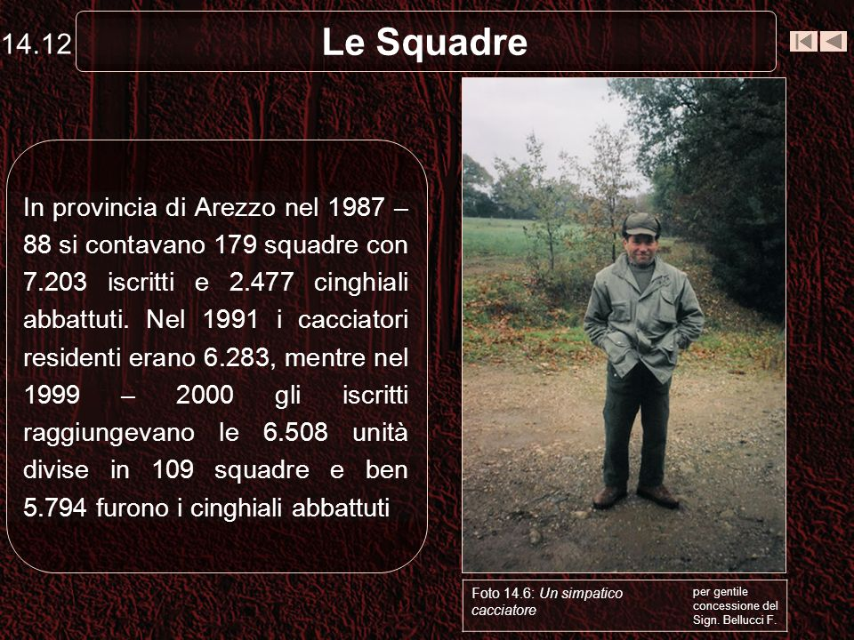 14.12 Le Squadre.