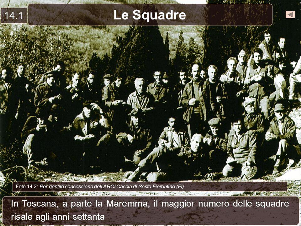 14.1 Le Squadre. Foto 14.2: Per gentile concessione dell'ARCI Caccia di Sesto Fiorentino (FI)