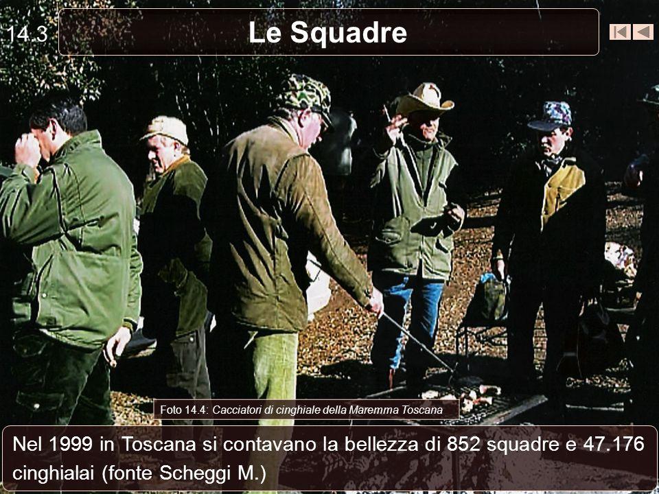 14.3 Le Squadre. Foto 14.4: Cacciatori di cinghiale della Maremma Toscana.