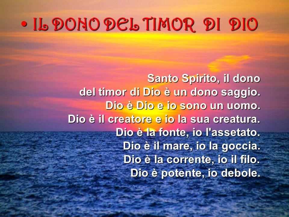 IL DONO DEL TIMOR DI DIO Santo Spirito, il dono