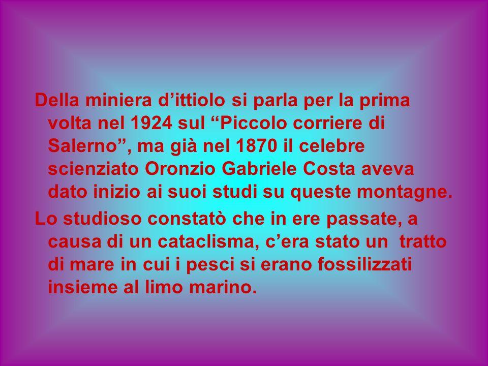 Della miniera d'ittiolo si parla per la prima volta nel 1924 sul Piccolo corriere di Salerno , ma già nel 1870 il celebre scienziato Oronzio Gabriele Costa aveva dato inizio ai suoi studi su queste montagne.