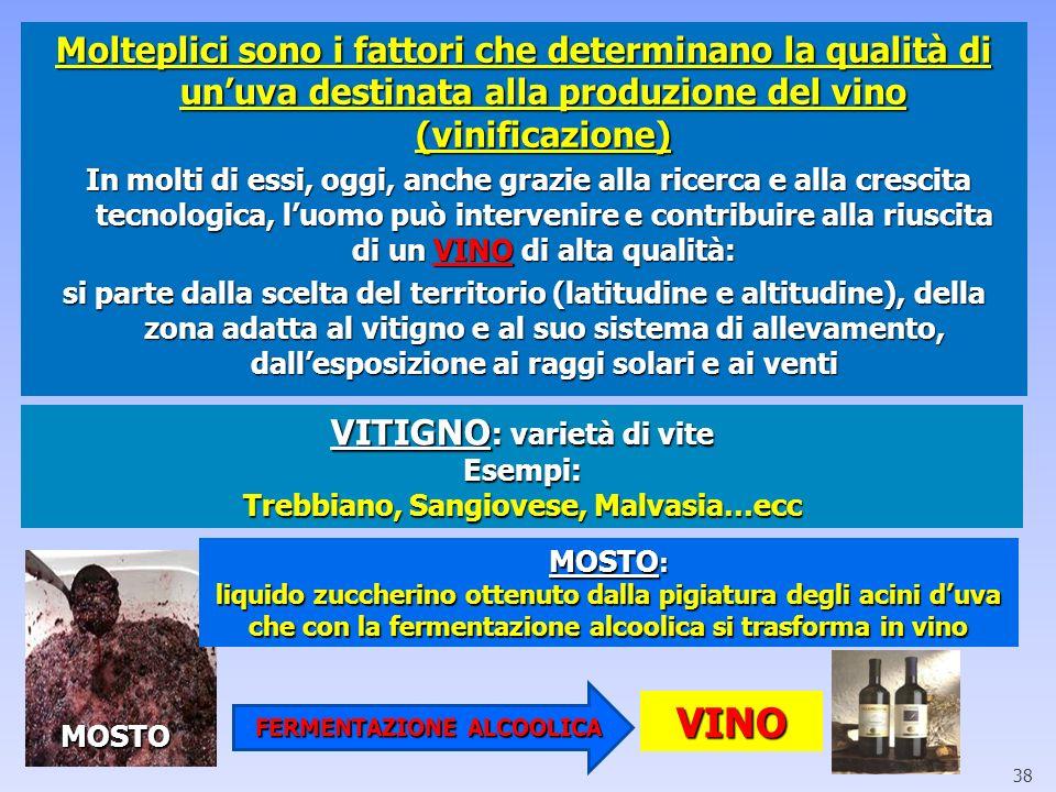 Molteplici sono i fattori che determinano la qualità di un'uva destinata alla produzione del vino (vinificazione)
