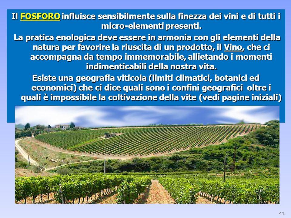 Il FOSFORO influisce sensibilmente sulla finezza dei vini e di tutti i micro-elementi presenti.