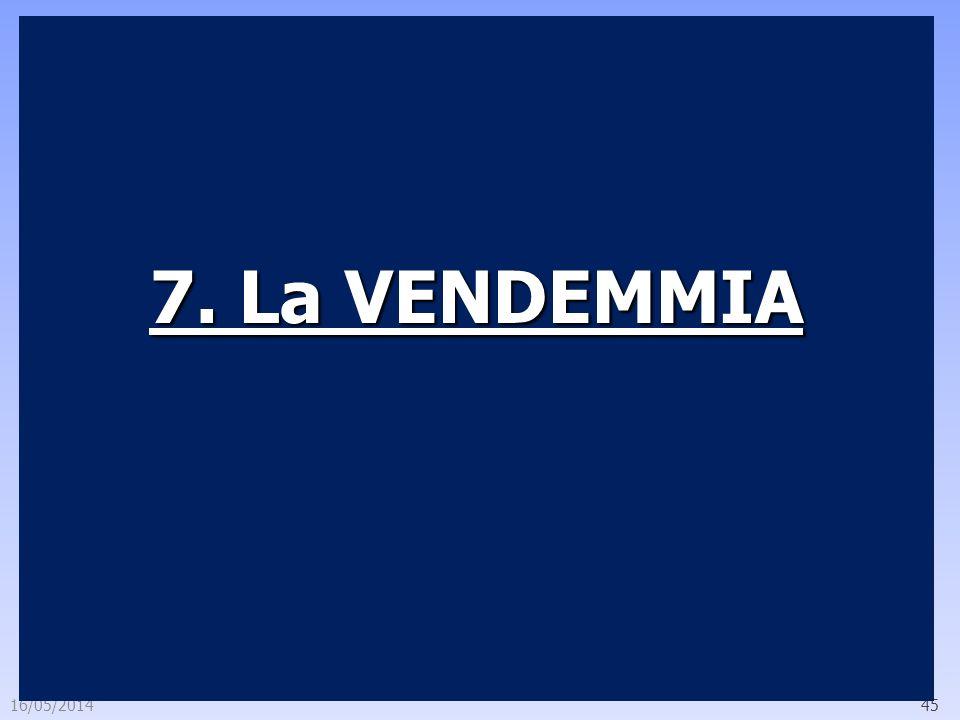 7. La VENDEMMIA 29/03/2017