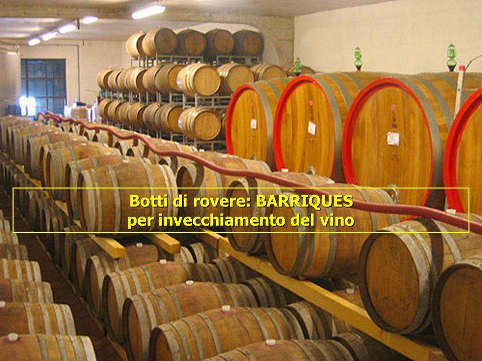 Botti di rovere: BARRIQUES per invecchiamento del vino