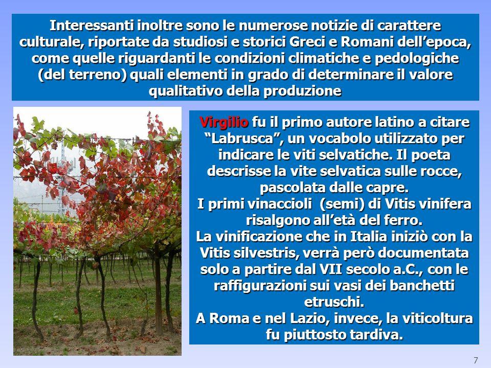 A Roma e nel Lazio, invece, la viticoltura fu piuttosto tardiva.