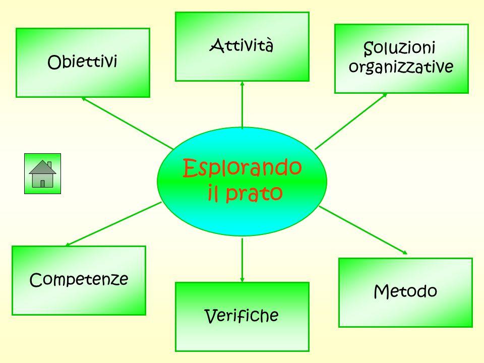 Esplorando il prato Attività Soluzioni Obiettivi organizzative