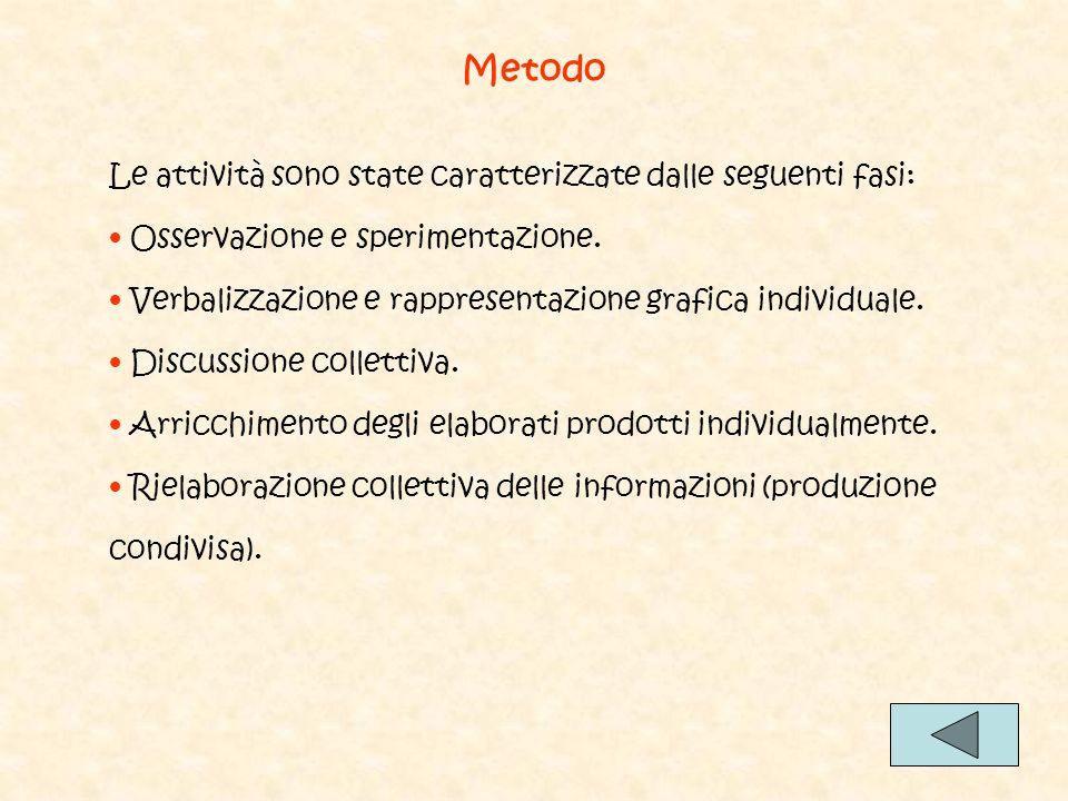 Metodo Le attività sono state caratterizzate dalle seguenti fasi: