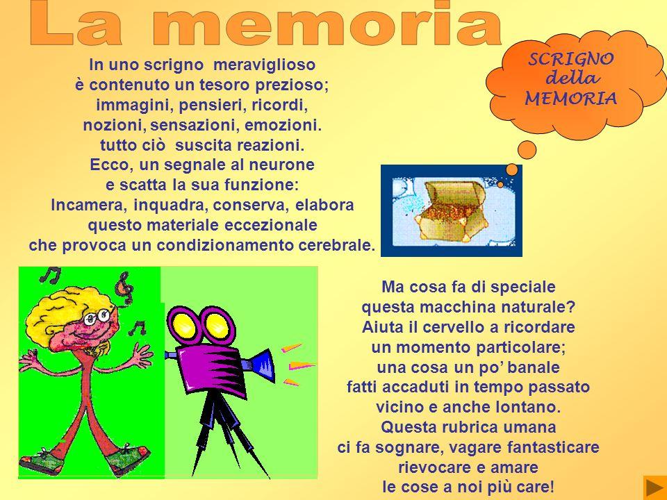 La memoria SCRIGNO della In uno scrigno meraviglioso MEMORIA